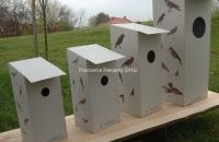 budki-kartonowe-dla-ptakow